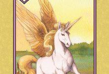 Unicorn - Summer